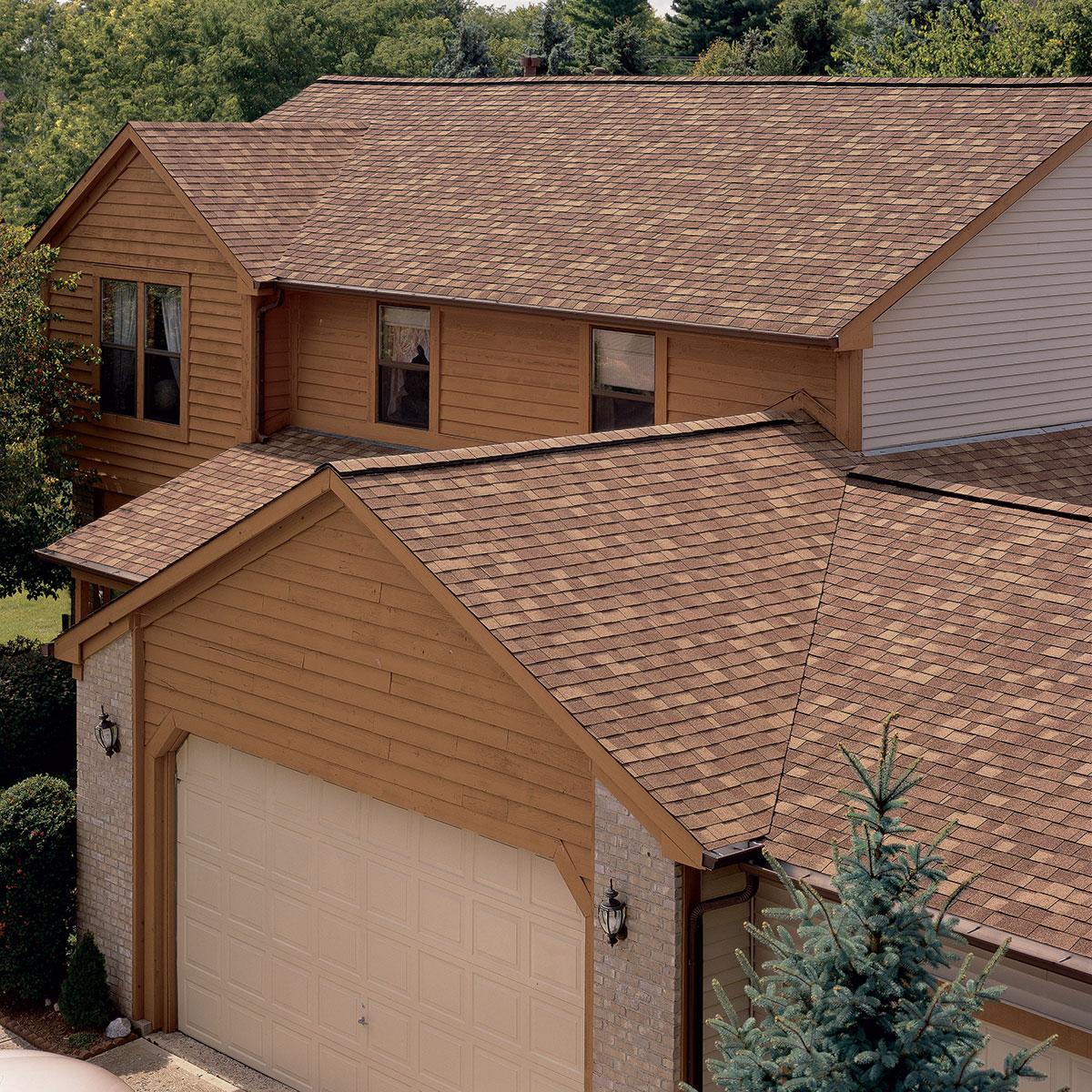 рождается катепал фото домов крыш весной они отрастают